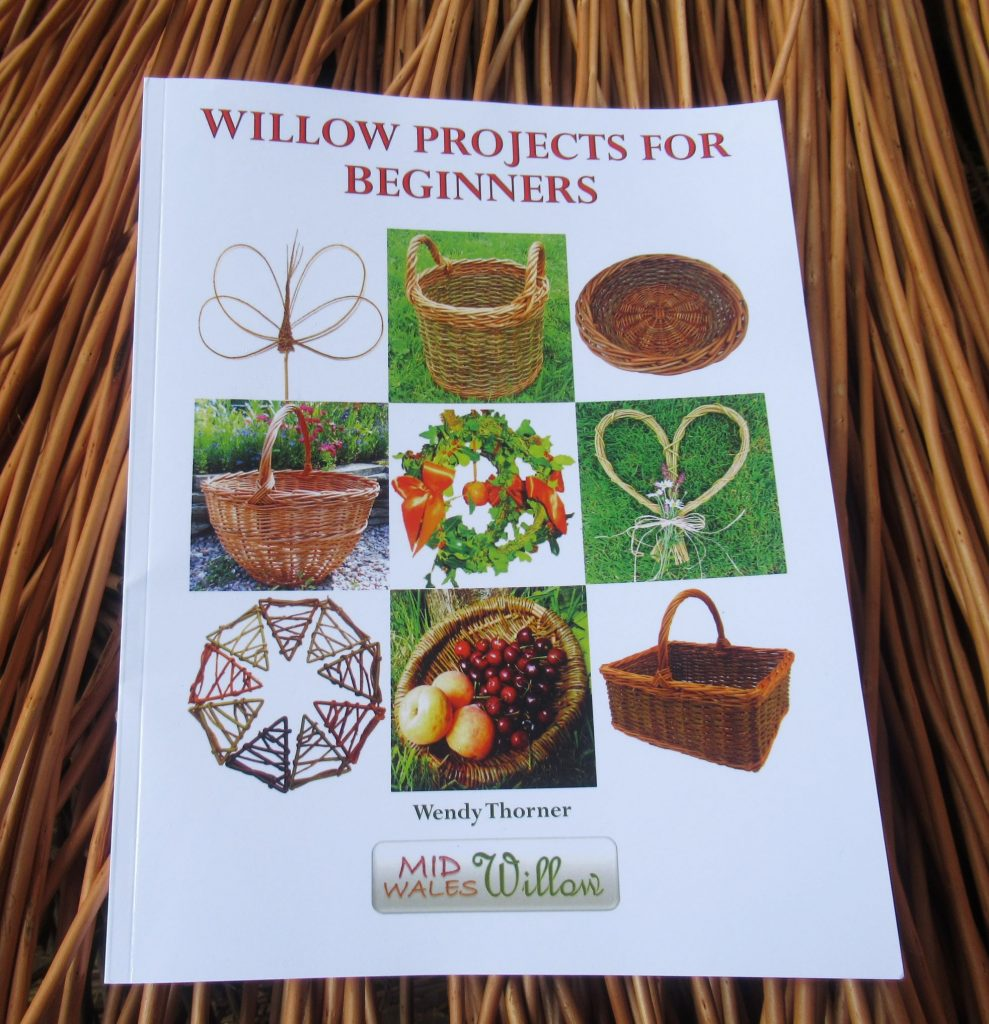 Willow Projects for Beginners